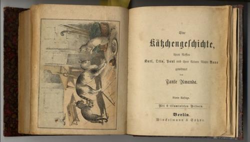- Sammelband mit 5 Kinderbüchern und Jugendschriften aus dem 19. Jahrhundert: 1. Sonntagsschul-Bibliothek 3, 102 Seiten mit einer  Lithographie (Titelei FEHLT, den Autor konnten wir nicht eruieren,  ab Seite 89 eine kleine Geschichte mit dem Titel: